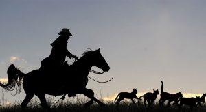 Leading a team of people can be like herding cats